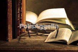 Ιδιαίτερα Μαθήματα - Φροντιστήρια Ζήτηση